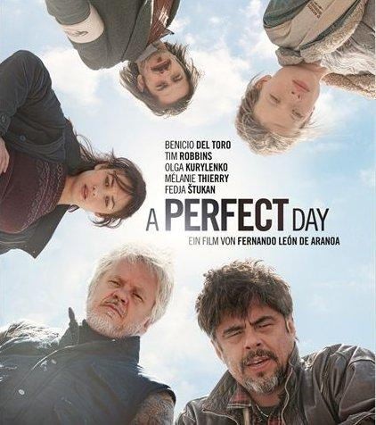 A perfect day (Un día perfecto)
